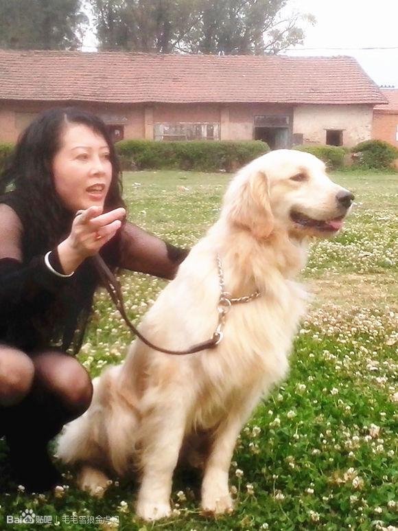 狗狗的东东卡里面了:狗狗的东西有多大图(点击浏览下一张趣图)